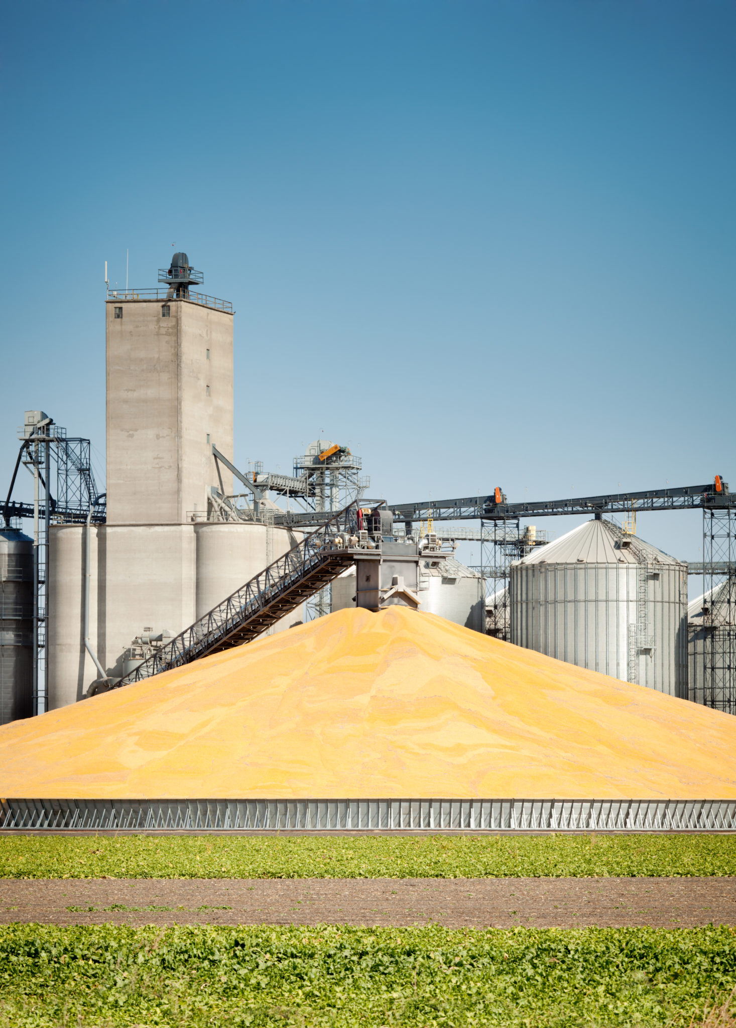 Kaman Automation iStock 174935118 Corn Harvest Processing Plant and Silos scaled